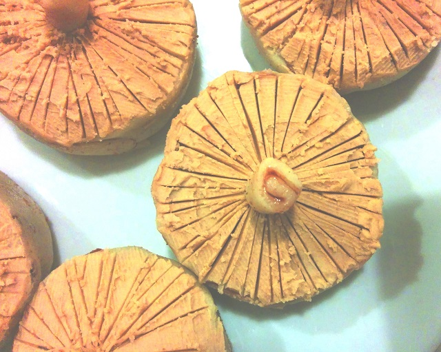Mushroom Cake 2