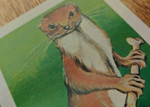 Dungeons & Dragons Monster Cards – Giant Weasel