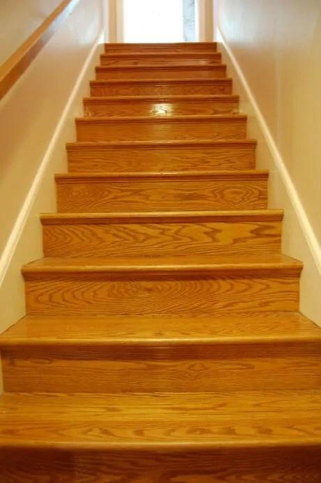 Carpet Runner For The Oak Stairs And Astro   Carpet For Basement Stairs   Exterior   Finishing   Navy Blue   Herringbone   Berber