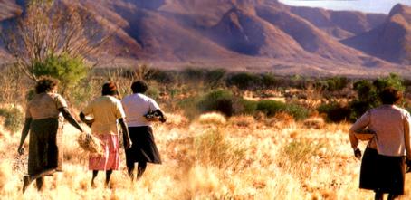 Australische Arboriginesfrauen sammeln Medizin