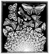 """Die eigene Realität erschaffen - """"Schmetterlinge"""" von M.C. Escher"""