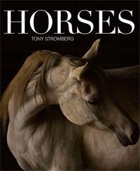 Horses by Stromberg