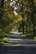 Fall Rustic Road