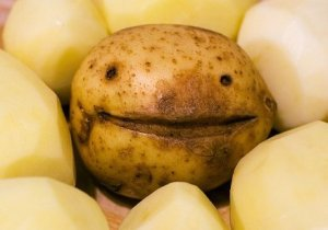 Happy Potato – Blog post 2-Jul-2014