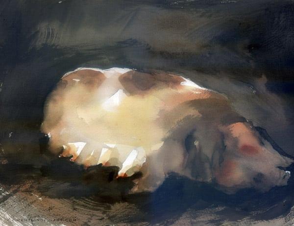truie basque aquarelle