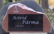 Памятник №55