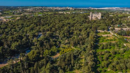Buskett - Reveal Malta
