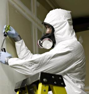 Asbestos abatement workers seal off and remove cancer-causing fibers.