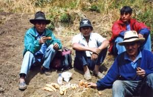 b ) campesinos beim coca kauen - vicos, peru, 2002 Sandra