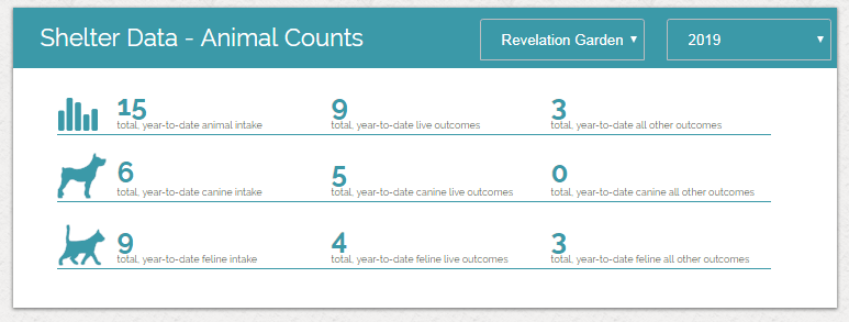 Shelter Count 2019