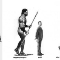 Fossil Giants: Ancient Men Over 7 ft. Tall
