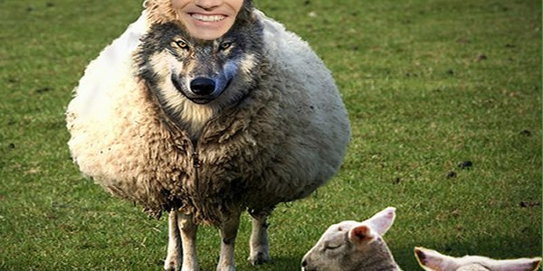 What Is A Wolf In Sheep S Clothing Meaning