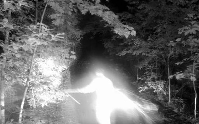 Angel Captured On Deer Cam?
