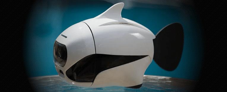 First Bionic Wireless Underwater Fish Drone