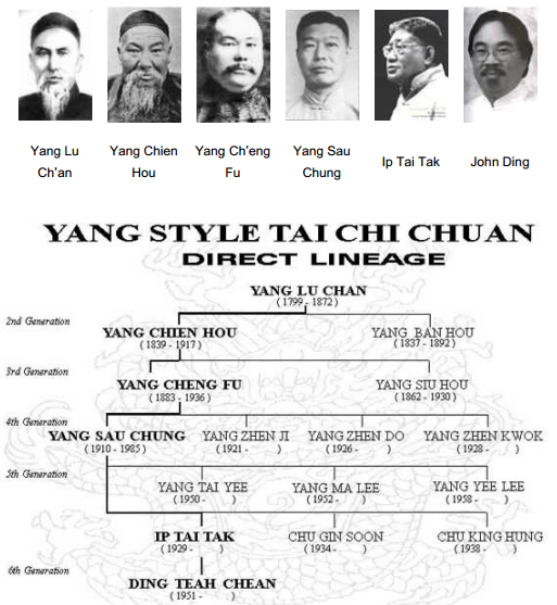tai chi chuan lignée yang