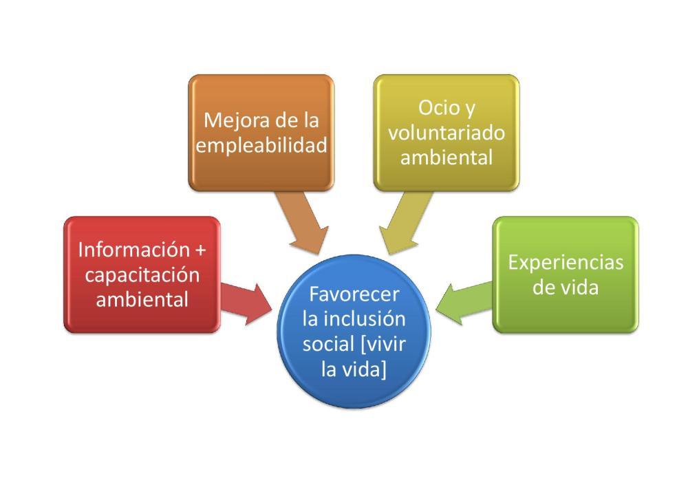Discapacidad ambiental y educación intelectual (3/4)