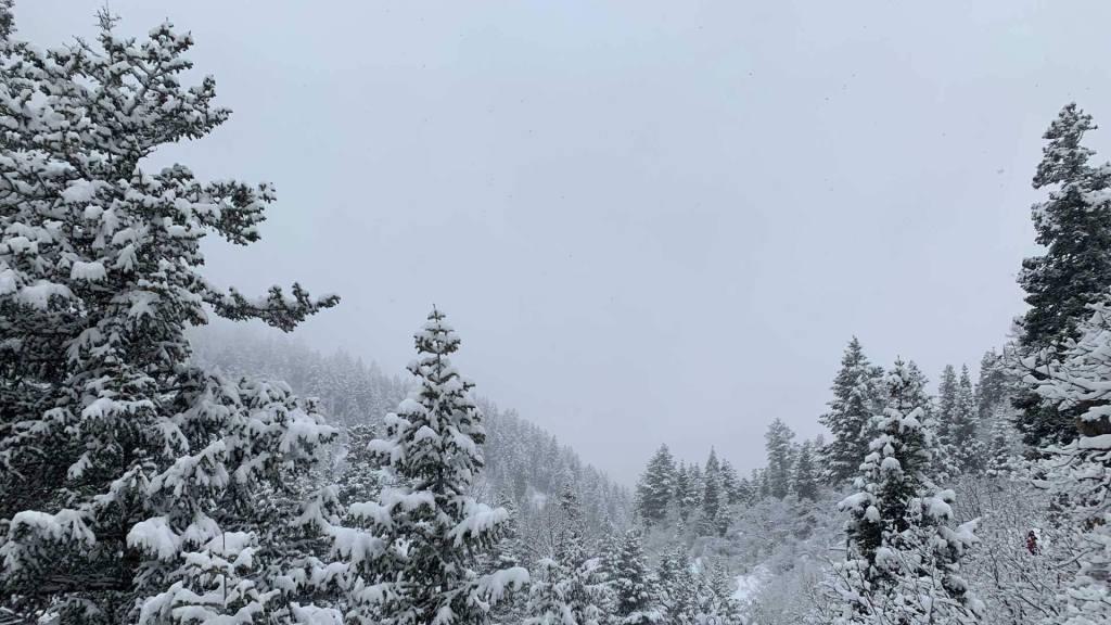 Bowman Fork Trail, Millcreek Canyon, Utah