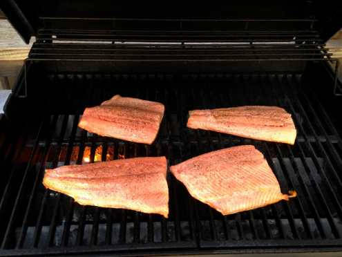 Fresh salmon on the grill