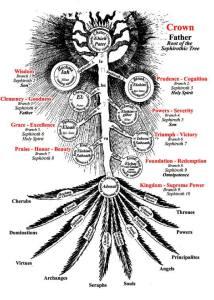 tree of life anthro
