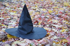 witches-hat-leaves-black-amongst-fallen-autumn-63226364