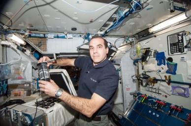 L'astronaute Rick Mastracchio travaille sur l'efficacité des antibiotiques dans l'espace (AES-1) au cours de l'expédition 38. (source NASA)