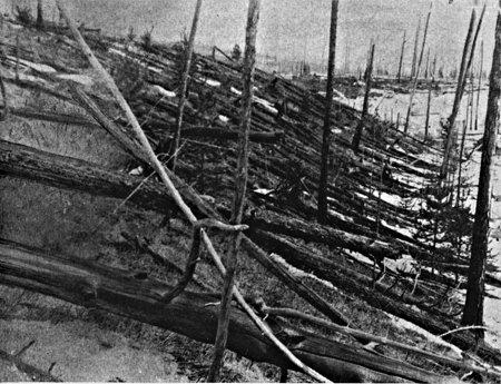 Les arbres de la forêt sur la région de Tunguska après la chute de l'astéroîde. Photo prise en 1927 par Leonid Kulik (source NASA)
