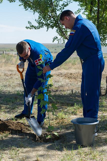 L'une des traditions avant le lancement d'un vol habité à Baïkonour : plantation d'un arbre. Cette tradition a commencé avec le vol de Gagarine. Ici Andreas Mogensen et Sergueï Volkov le 26 aout 2015 (Credit: Gagarin Cosmonaut Training Center)