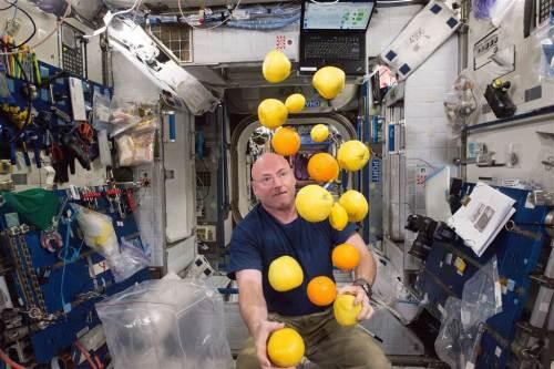Scott Kelly joue avec des fruits frais apportés par le cargo japonais Kounotori 5 (ou HTV 5) le 25 août (Credit NASA)