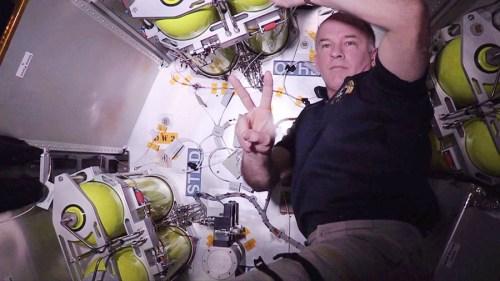 Le 8 juin, l'astronaute Jeff Williams travaille dans le module gonflable BEAM (credit NASA)