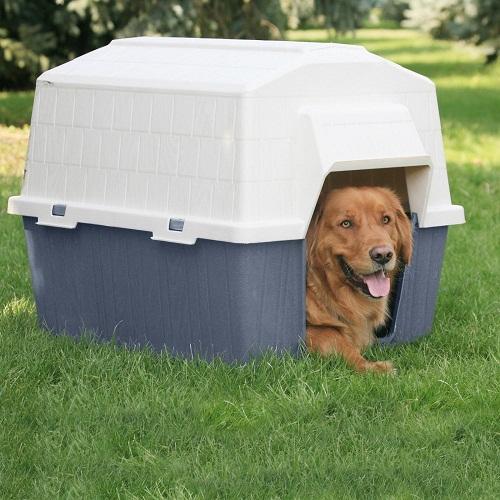 Dosckocil Barnhome III Dog House
