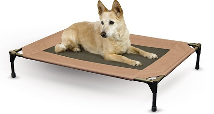 Best Pet Beds And Sofas