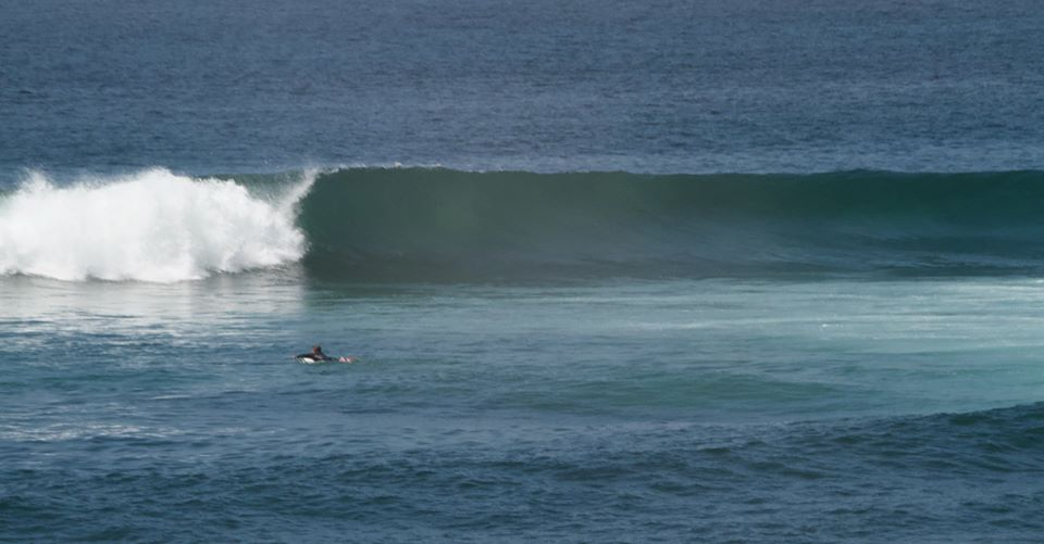 Surfing solo Windansea during the pandemic, 4-16-20. Photo by Randy Dible.