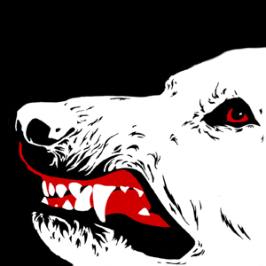 white_dog_criterion_dvd