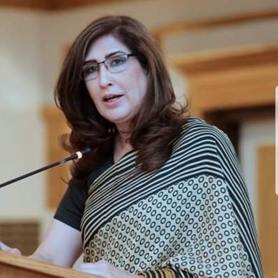 Shehla Raza On Losing Children In Accident 59