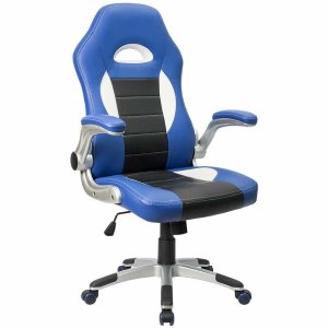 What is a Good Ergonomic Chair for Under $100?
