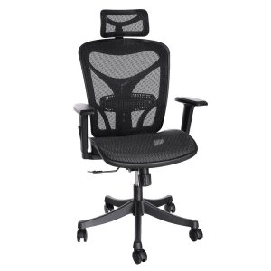 What are the Best Ergonomic Office Chairs Under $300?