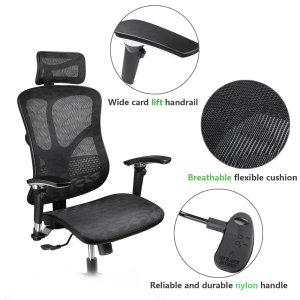 Argomax Mesh Ergonomic Chair Review