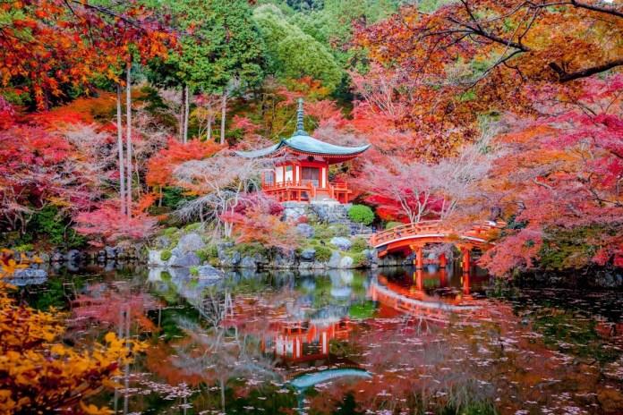 Daigo Ji Temple in Kyoto, Japan 1