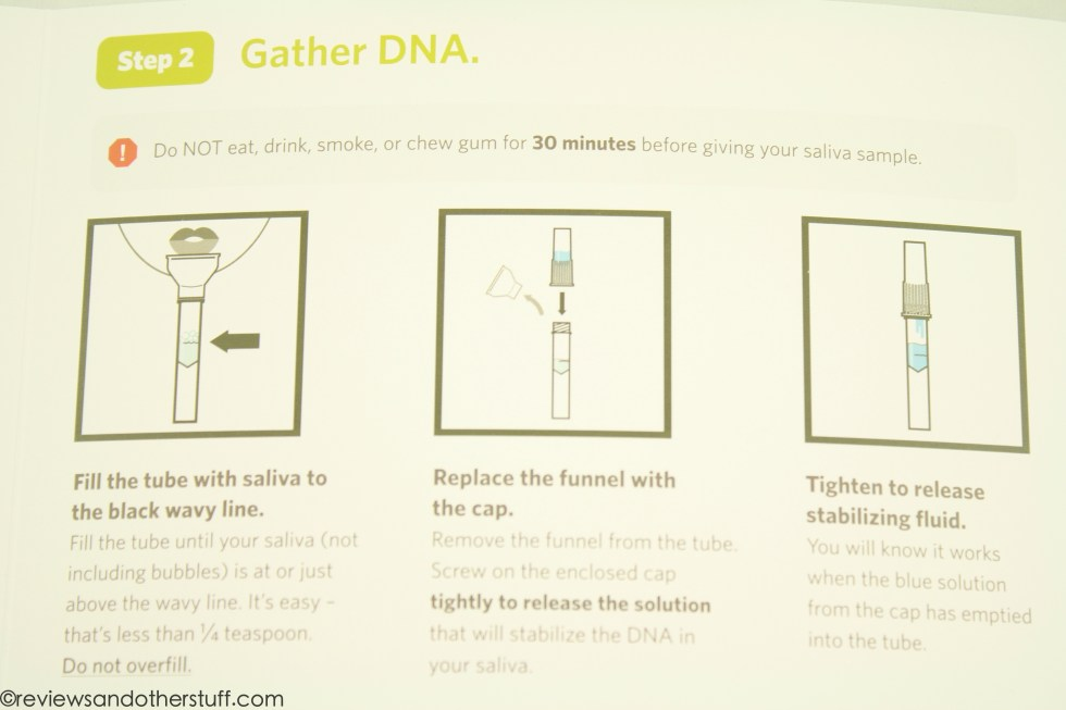 ancestry dna instruction step two