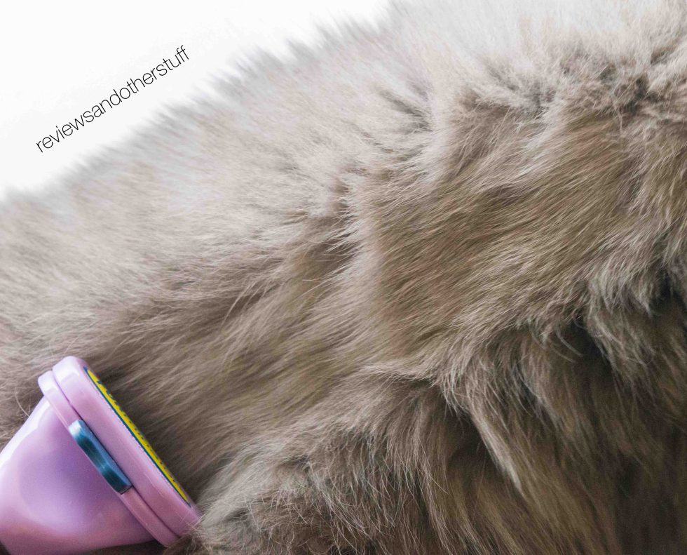 furminator deshedding review