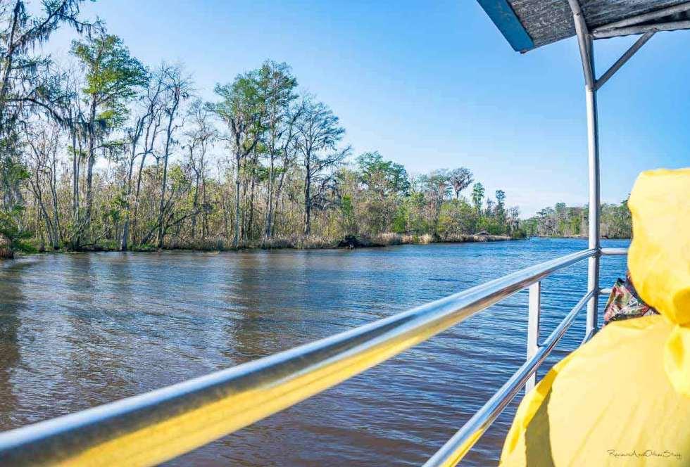 torres cajun swamp tour nola