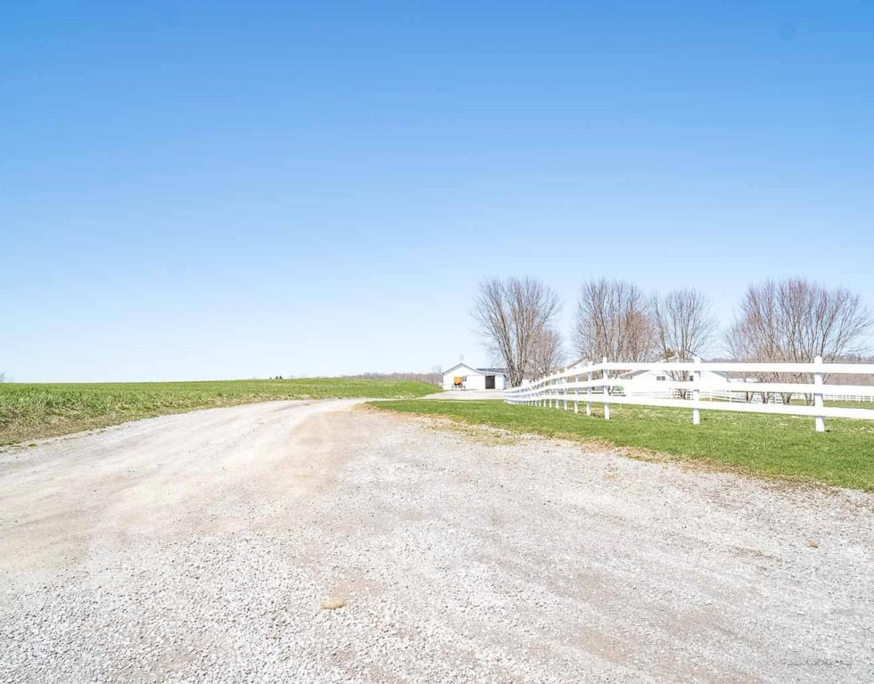 new wilmington pa amish road