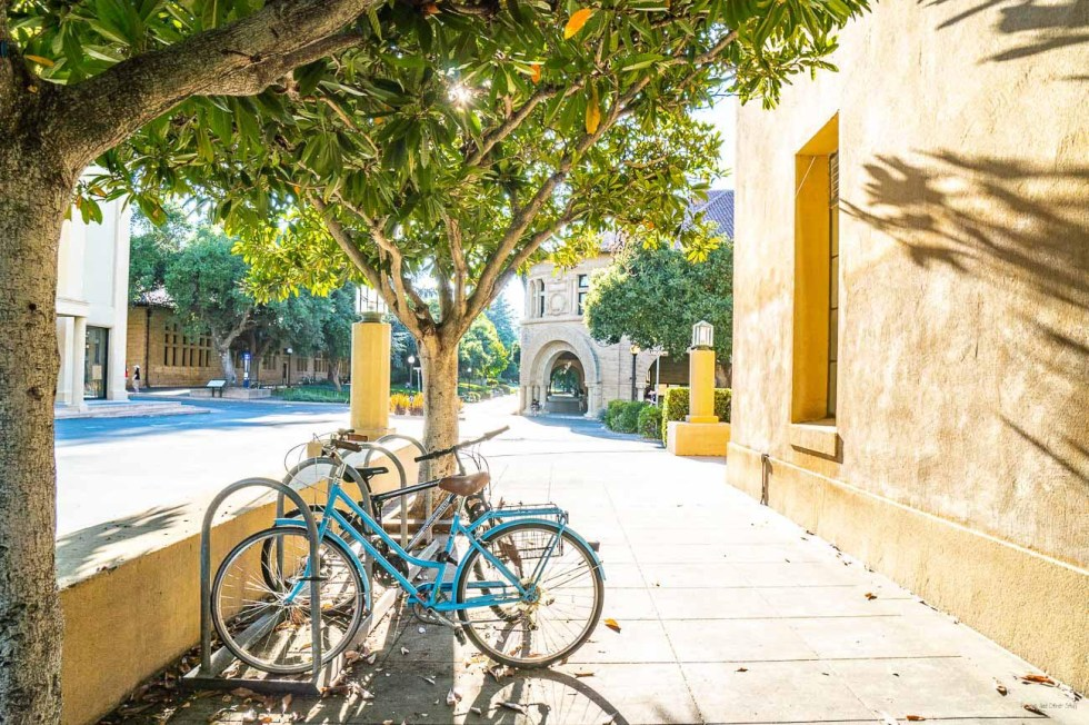 stanford university bicycles