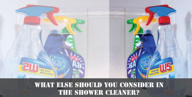 What-else-should-you-consider-in-the-shower-cleaner