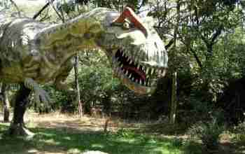 Indroda Natural Park (Gandhinagar): Biggest Park in Gandhinagar - Indroda Natural Park