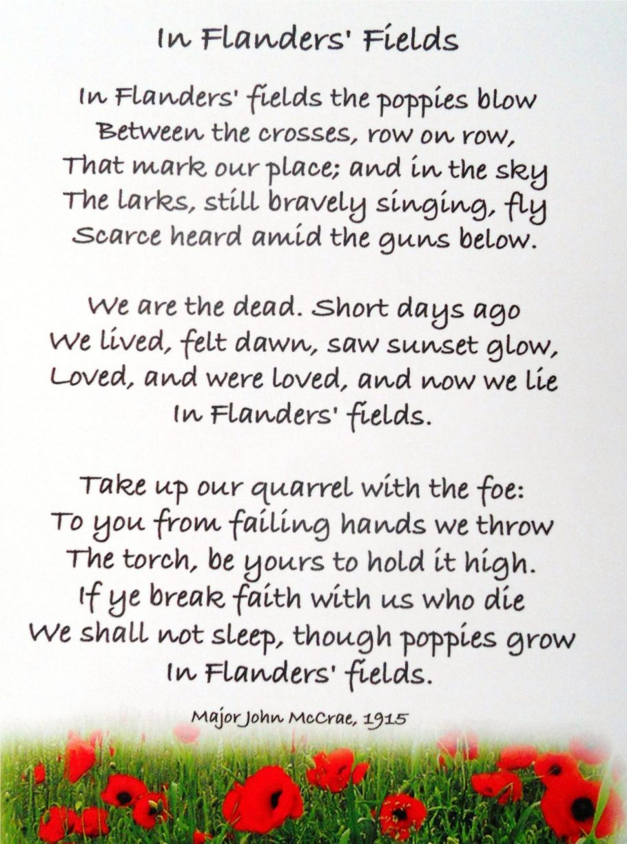 In Flanders Fields.JPG
