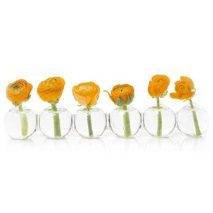 best vases for sunflowers