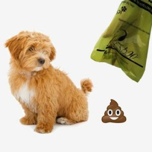 The Best Eco-Friendly (Bio-Degradable) Dog Poop Bags Today