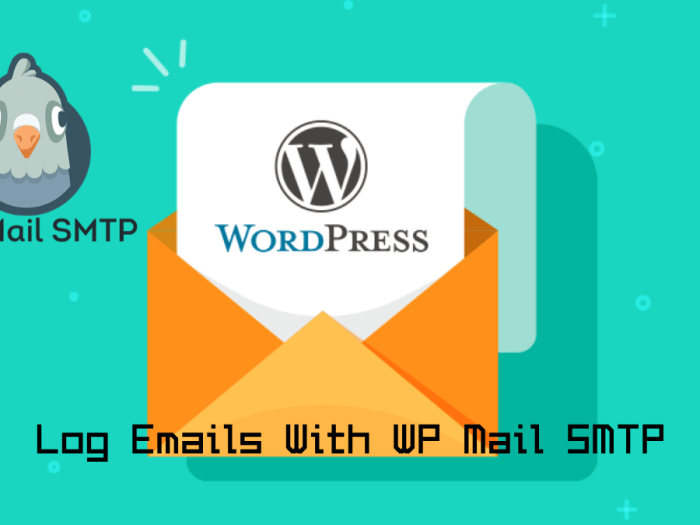 Log Emails With WP Mail SMTP