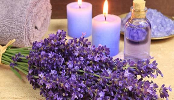 Serum dưỡng ẩm trắng da Lavender organic